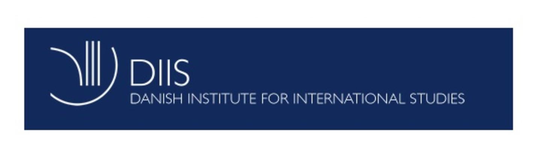 Image result for diis.dk logo